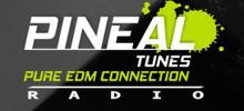 Pineal Tunes Radio