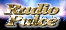 Radio Pulce