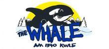 The Whale Radio