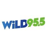 WLDI Wild 95.5