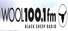 Wool FM